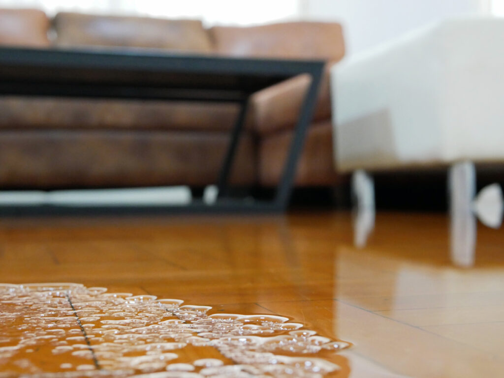 How to Handle Water, Mold, Fire & Smoke Damage to Your Property