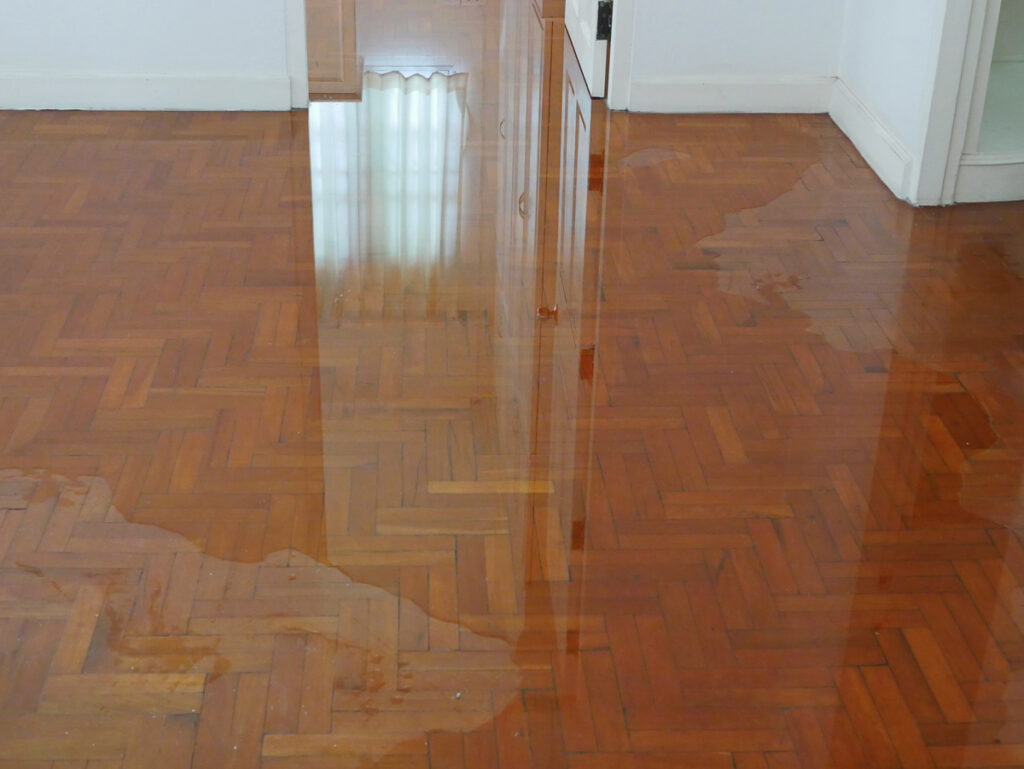 The Most Common Causes of Water Damage