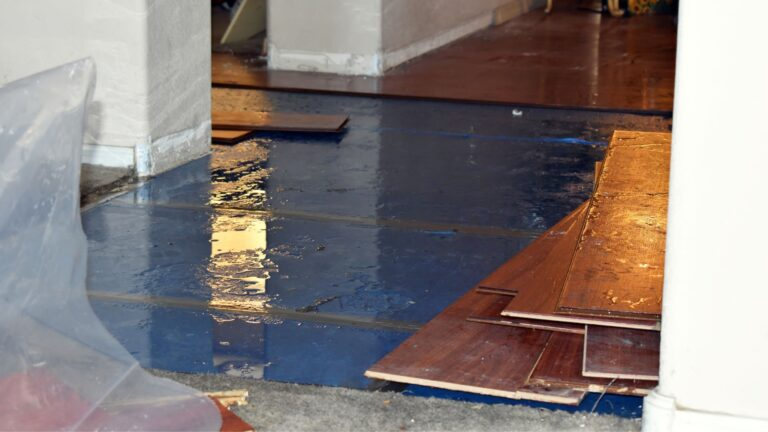 10 Water Remediation Tips that Can Protect You and Your Home