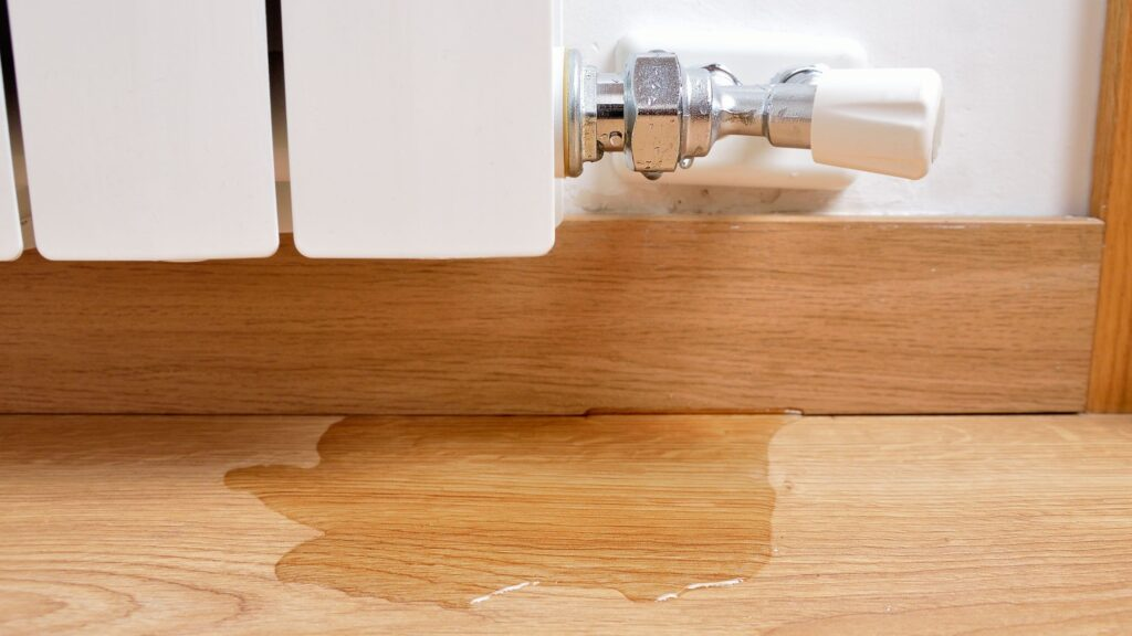 7 Steps to Take After Finding Water Damage in Your Home